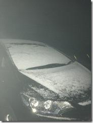 ふりました、ね       雪